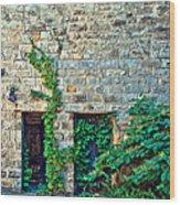 Reclaiming Stonehaven Wood Print