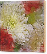 Red And White Mums Photoart Wood Print
