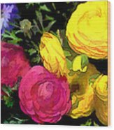 Red And Yellow Ranunculus Flowers Wood Print