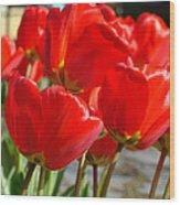 Red Art Spring Tulip Flowers Floral Wood Print
