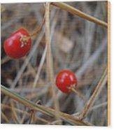 Red Asparagus Berries Wood Print