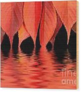 Red Autumn Leaves In Water Wood Print
