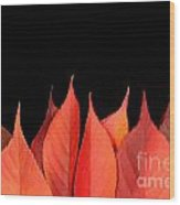 Red Autumn Leaves On Edge Wood Print