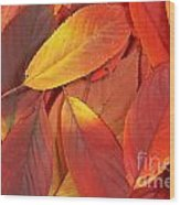 Red Autumn Leaves Pile Wood Print