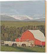 Red Barn With Horses Grazing Wood Print by Michael Interisano