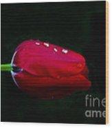 Red Beauty Wood Print