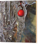 Red Berry In Icicle Wood Print
