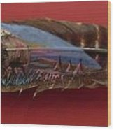 Red Bison Wood Print