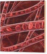 Red Blood Cells In Blood Vessels, Artwork Wood Print