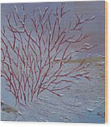 Red Branches Wood Print