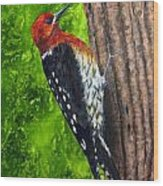Red Breasted Sapsucker Wood Print