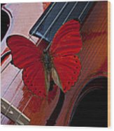 Red Butterfly On Violin Wood Print
