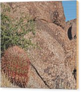 Red Cactus Rock Wood Print