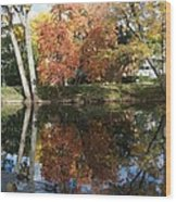 Red Cedar Reflections Wood Print