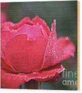 Red Crystal Petals Wood Print
