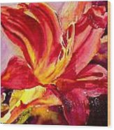Red Day Lily Wood Print