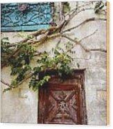 Red Door Blue Door Wood Print