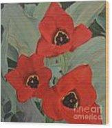 Red Emperor Tulip Study Wood Print