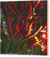 Red Entanglement Wood Print
