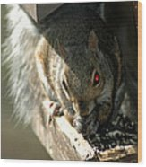 Red Eyed Demon Squirrel Wood Print