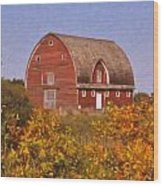 Red Fall Barn Wood Print