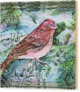 Red Finch Wood Print by Mindy Newman