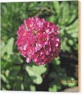 Red Flower Ball Wood Print