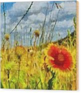 Red Flower In The Field Wood Print