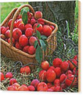 Red Fresh Plums In The Basket Wood Print