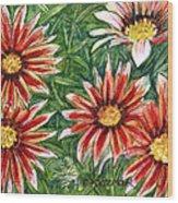 Red Gazanias Wood Print