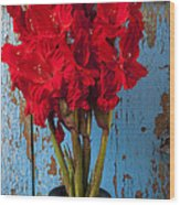 Red Glads Against Blue Wall Wood Print