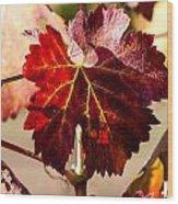 Red Grapeleaves Wood Print