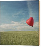Red Heart Balloon, Blue Sky And Fields Wood Print