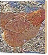 Red Hen Wood Print