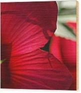 Red Hibiscus Wood Print