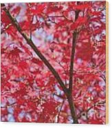 Red Leaves And Branch Wood Print