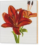 Red Lily Number One Square Wood Print