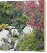Red Maple Above The Falls Wood Print