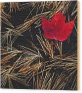 Red Maple Leaf On Pine Needles In Pool Wood Print by Mike Grandmailson