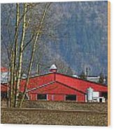 Red Matsqui Barn Wood Print