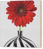 Red Mum In Striped Vase Wood Print