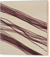 Red Nylon Fibers Wood Print