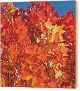 Red Orange Yellow Autumn Leaves Art Prints Vivid Bright Wood Print