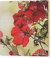 Red Petunias Wood Print