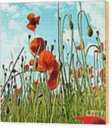 Red Poppy Flowers 03 Wood Print