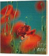 Red Poppy Flowers 05 Wood Print