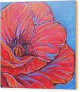 Red Poppy Wood Print by Jenn Cunningham