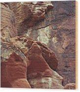 Red Rock Canyon Petroglyphs Wood Print