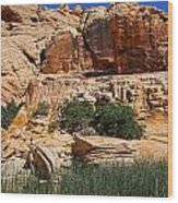 Red Rock Canyon The Tank Wood Print