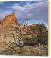 Red Rock Castle Wood Print